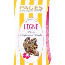Infusion Bio Ligne Hibiscus- Pamplemousse - Groseille vrac