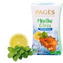 Infusion glacée Menthe Citron bio 20 sachets