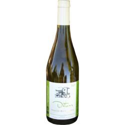 Saint Joseph des Amphores, vin rouge bio AOC Domaine des Amphores