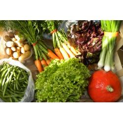 Panier de légumes bio et locaux