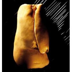 Foie gras de canard frais déveiné France sous-vide Masse la maison du foie gras