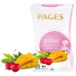 Infusion Bio Ligne Citronnelle Thé Vert Mangue Cerise