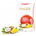 Infusion Bio Brûle Graisse Saveur Coco Ananas 20 sachets